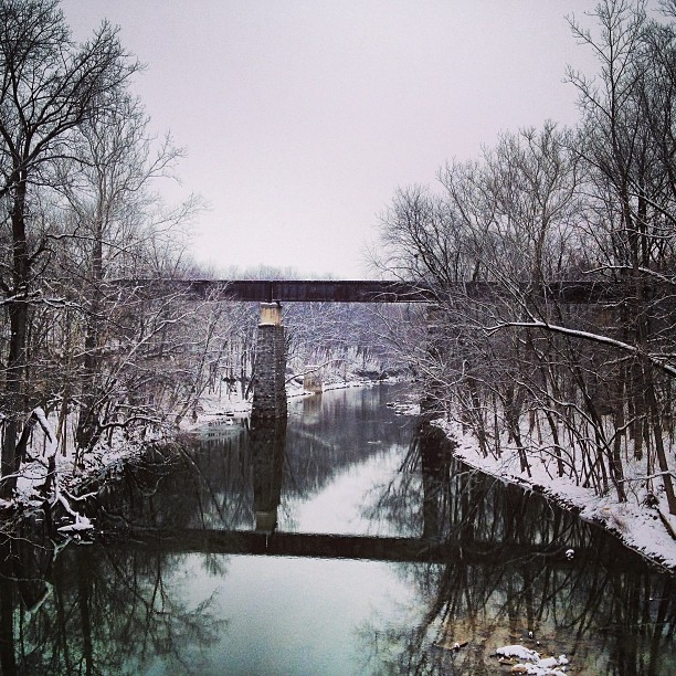 wintertrestle